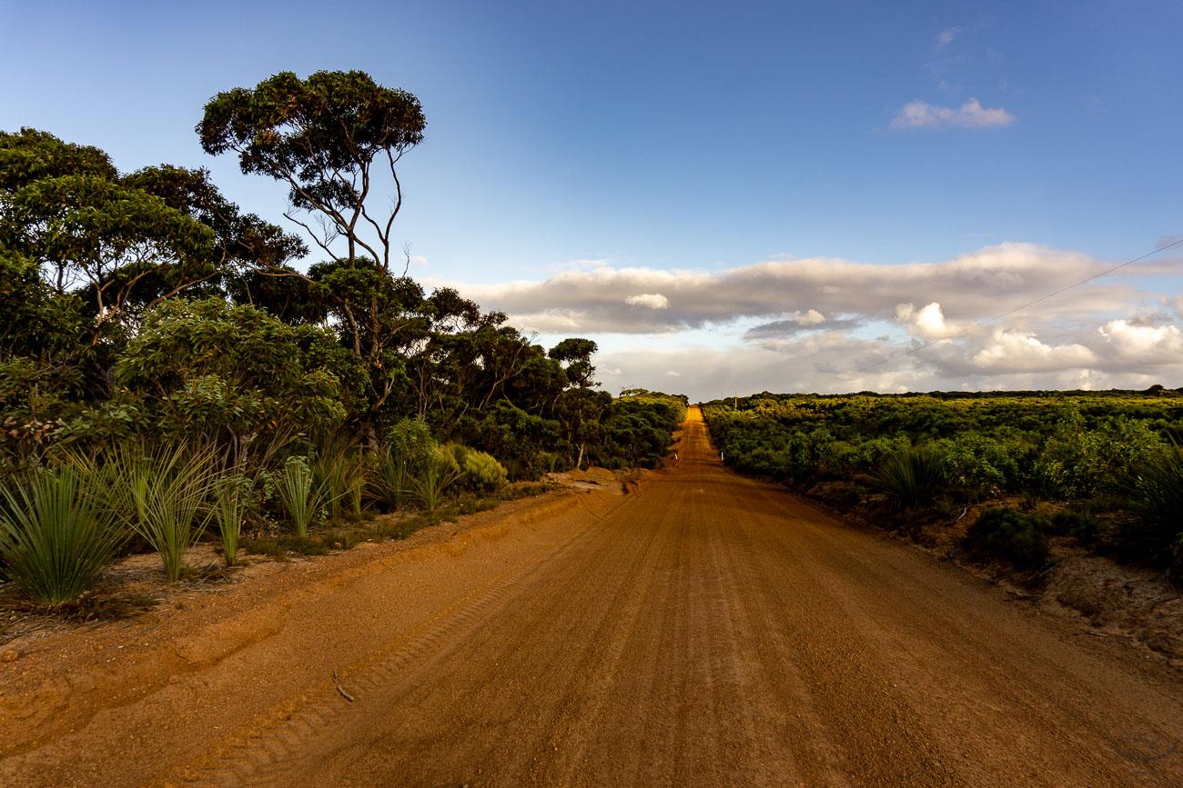 Wyspa Kangura Australia co zwiedzać