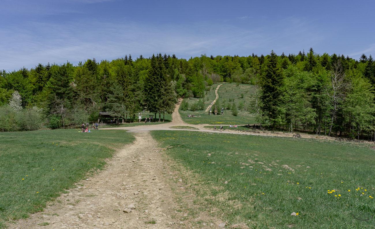 Szlak na Suchą Polanę