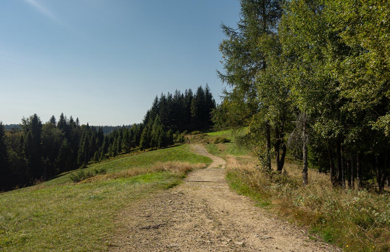 Wyjście na Turbacz
